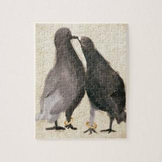 Pombos românticos quebra-cabeça