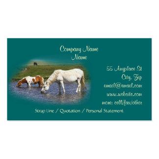 Pôneis em cartões de visitas do furo molhando