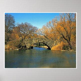 Ponte do Central Park Posteres
