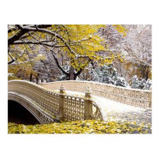 Ponte nevado no Central Park NYC Cartão Postal