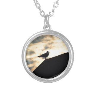 Por do sol da gaivota de mar colar banhado a prata