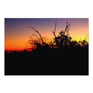 Por do sol dos pantanais de Bolsa Chica Impressão De Foto