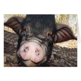 Porcos e beijos, dia das mães, mini cartão do
