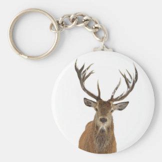 Porta-chaves cervo de vermelho chaveiro