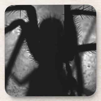 Porta-copo Arachnophobia…