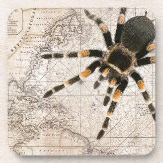 Porta-copo aranha do mapa