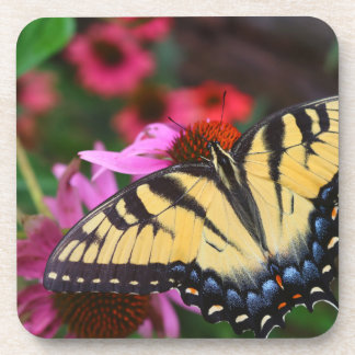 Porta-copo Borboleta de Swallowtail