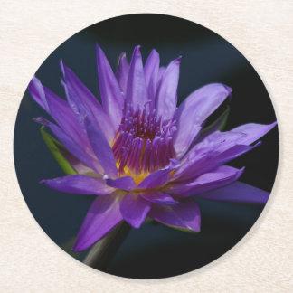 Porta-copo De Papel Redondo Lotus roxo Waterlily