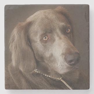 Porta-copo De Pedra Cão de caça de Weimaraner