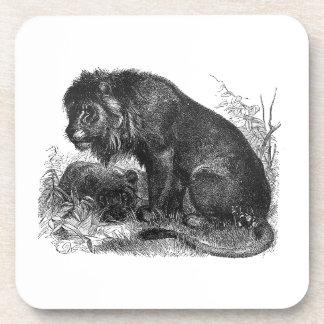Porta-copo Dois leões na região selvagem