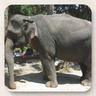 Porta-copo Elefantes em Tailândia