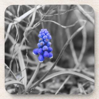 Porta-copos Cor seleta só do jacinto de uva