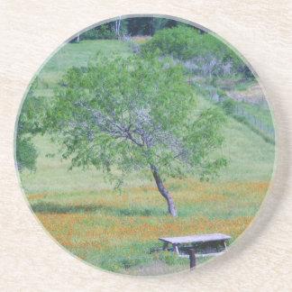 Porta copos da árvore do Mesquite
