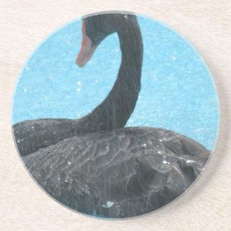 Porta copos da cisne preta