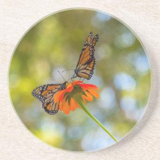 Porta-copos De Arenito Borboletas de monarca em Wildflowers