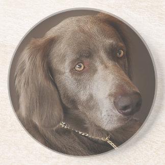 Porta-copos De Arenito Cão de caça de Weimaraner