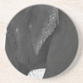 Porta-copos De Arenito Elefante