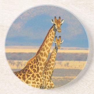 Porta-copos De Arenito Girafas no cenário bonito da natureza de África do