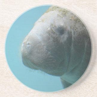 Porta-copos De Arenito Grande peixe-boi subaquático