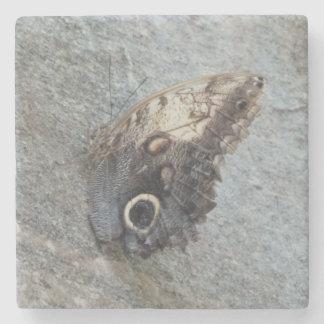 Porta copos de pedra de mármore da borboleta