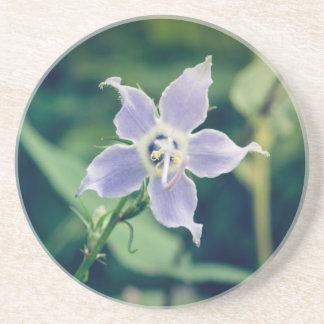 Porta copos do arenito do Wildflower do Bellflower