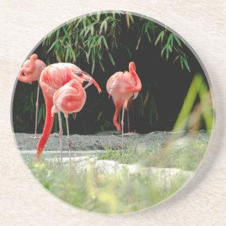 Porta-copos flamingo