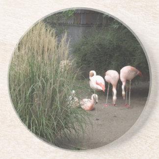 Porta-copos Flamingos
