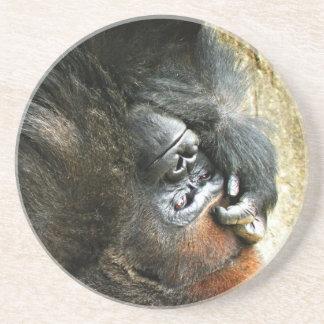 Porta copos Lounging do gorila
