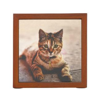 Porta-lápis Animal de estimação novo bonito do gatinho do