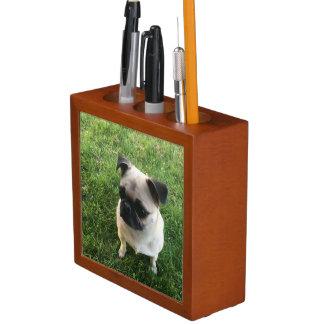 Porta Lápis Filhote de cachorro do Pug