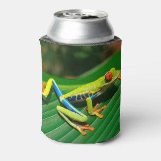 Porta-lata Sapo de árvore vermelho-eyed do verde tropical da