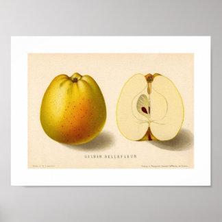 Poster amarelo e vermelho de Apple