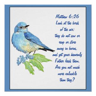 Póster Bluebird encorajador de Matthew da escritura da
