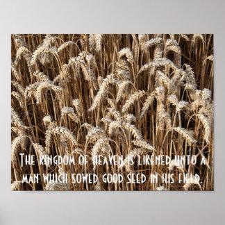 Póster Boas sementes da porca