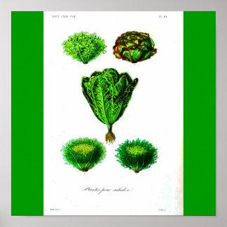 Poster-Botanicals-Alfaces