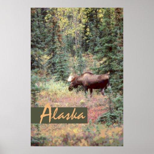 Poster cénico decorativo de Alaska dos alces