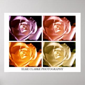 Poster cor-de-rosa da arte moderna da fotografia