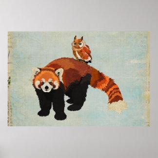 Poster da arte da panda vermelha & da coruja