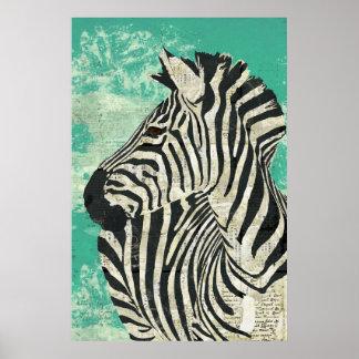 Poster da arte de turquesa da zebra do vintage pôster