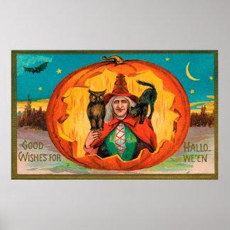 Poster da decoração do partido da coruja do gato