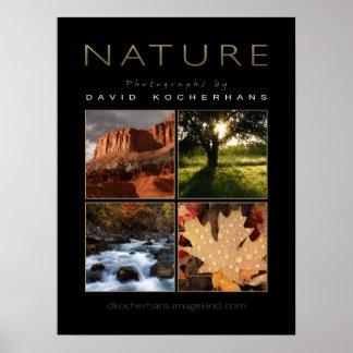 Poster da fotografia da natureza