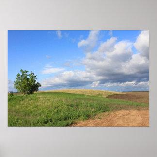 Poster da paisagem