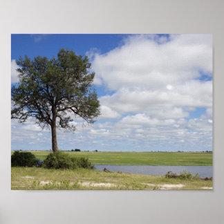 Poster da paisagem de Botswana Pôster