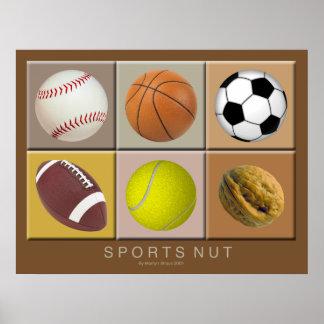 Poster da porca dos esportes pôster