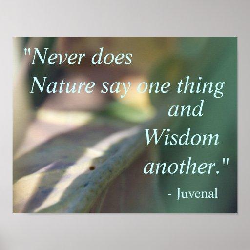 Poster das citações da natureza de Juvenal