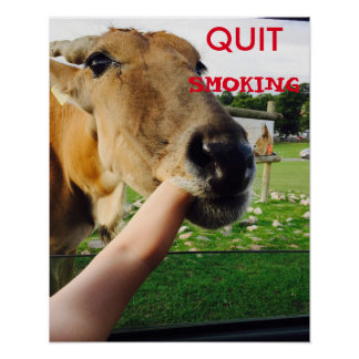 Poster de fumo parado engraçado