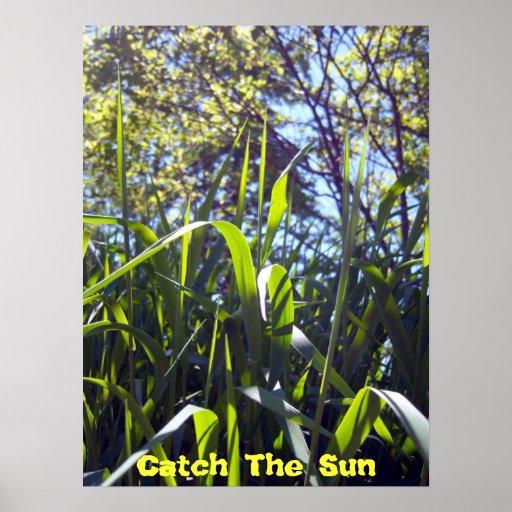 Poster de The Sun da captura