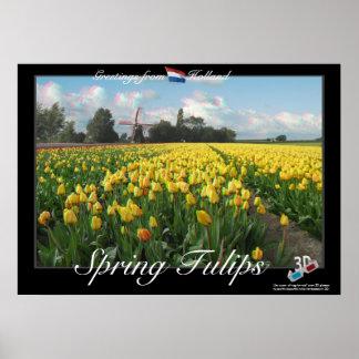 Poster do Anaglyph da paisagem 3D das tulipas do p