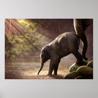 Poster do banho do elefante do bebê primeiro pôster