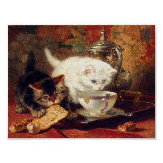 Poster do chá alto